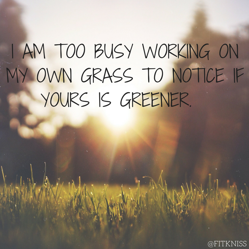 i-am-too-busy-working-on-my-own-grass-to-notice-if-yours-is-greener